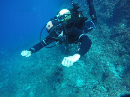 Dive Master formación en Buceo-Malta.